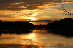 golden hour at Swithland (karlh1970) Tags: reflection clouds landscape leicestershire ducks swithland goldenlight