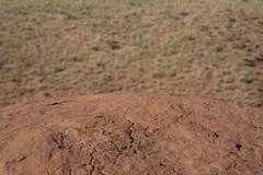 (drl.) Tags: red orange rock utah desert monotone redrock range emerycounty