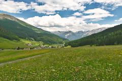 Tschierv (flschen) Tags: alps alpes schweiz switzerland suisse alpen svizzera alpi graubnden svizra grigioni valmstair grischun engiadina tschierv