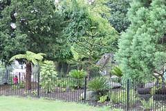 Roar (George De) Tags: bush london hornimanmuseum hornimangarden dinosaur hidden