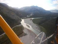 Back to bush plane flying
