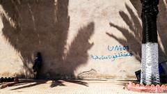 Diffrents (cafard cosmique) Tags: maroc essaouira morocco streetphotography