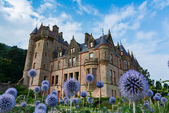 Dreamy Belfast Castle on Beautiful Flowers in Garden Perspective One (HunterBliss) Tags: abstract architecture background beautiful belfast blue brick bright building castle colorful corner culture dreamy europe european exterior fairy famous field flowers focus garden historic historical history ireland landmark monument north outside painted perspective purple sight sightseeing sky stone structure tale top tourism tourist travel traveling