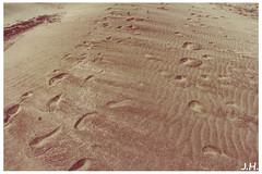 Marche dans le sable - Walk in the sand - Beauduc - Camargues - 13 (J oSebArt's Pictures) Tags: 2013 lightroom photoshop adobe ef18135 canon650d 650d canon summer cloudporn skyporn cielo sky clouds nuages ciel mer sea plage sable sand camping sauvage tellines landscape paysage beauduc saintesmariedelamer camargues bouchesdurhone provencealpescotedazur sudest francesudest france camargue paradis surf kitsurf kitsurfeur lagune piemanson cabanon