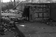 Is drinking the problem or solution? (Alicia Vazquez Photography) Tags: white chicago black photography illinois still sad emotion bottles homeless drinking il depression straight emotional feelings depressing chicagoil