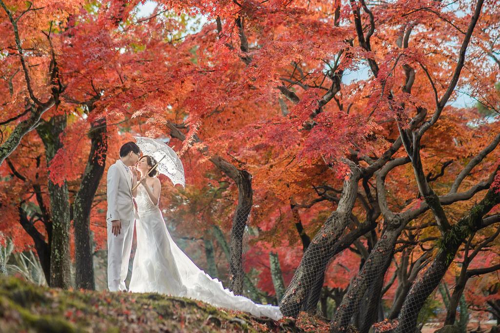 櫻花.楓葉,京都婚紗,大阪婚紗,楓葉婚紗,海外婚紗,京都婚紗
