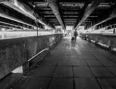 Trolley Case (Rupert Brun) Tags: bridge bw man london monochrome wheel thames eclipse ramp path trolley grunge pedestrian case southbank hungerford grime suitcase footpath wheelie 2015
