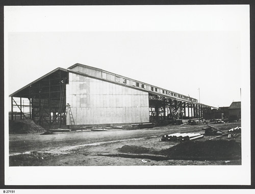 Cargo shed at berth 12 under construction. - Photograph courtesy of the State Library of South Australia