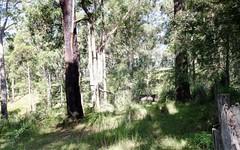 Lot 1 Old Mill Road, Turlinjah NSW
