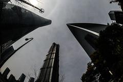 DSC_0271-9 (tamas.doczi) Tags: china skyline nikon skyscrapers shanghai fisheye    pudongskyline   theopener wordfinancialcentershanghai
