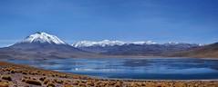 Miscanti (El cerro.) Tags: sanpedrodeatacama lagunamiscanti