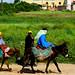 DE SAFI A EL YADIDA (Marruecos)