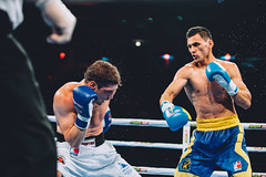 17/04/2015 Week 13 Group A Match Ukraine Otamans vs Russian Boxing Team (World Series Boxing) Tags: wsb boxing aiba seasonv worldseriesboxing russianboxingteam ukraineotamans
