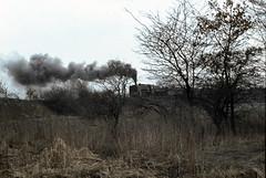 Polen_80_019a (r_walther) Tags: polska zug polen zeche pol dampflok lok zabrze pkp lokomotywa schlesien ty45 parowy kolejowej