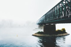 i can't fall back on you 'cause that's not what i do (ivvy million) Tags: city morning bridge autumn urban fall fog architecture river germany deutschland europa europe nebel herbst brcke fluss rhine rhein mainz rlp rheinlandpfalz sdbrcke rheinmain rhinelandpalatinate mayence rheinmaingebiet 18105mm mainzersdbrcke nikond7100 ivvymillion