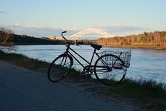 Fishing Bikes 2016 (wildukuleleman) Tags: bike bicycle canal fishing massachusetts cape cod 2016 fishinhg