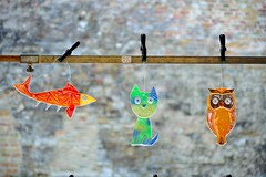 Random (__sam) Tags: fish glass cat belgium brugge may owl belgi