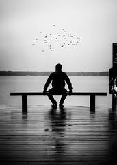 500px Photo ID: 88675709 (andrejsmaculskis) Tags: sea blackandwhite man black birds fog bench coast sitting lookingintothedistance birdsfly
