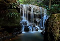 Leura Weeping Rock (Darren Schiller) Tags: longexposure water forest landscape waterfall rocks bluemountains newsouthwales cascade leura