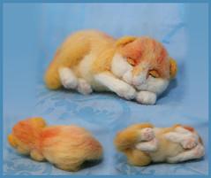 red cat (Di-Snake) Tags: animal felted kitten kat felting handmade redkat feltingkitten fektedkitten