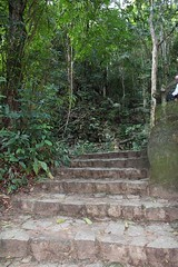 Up the steps in a tropical rainforest in Rio de Janeiro, Brazil (eltpics) Tags: brazil riodejaneiro rainforest steps tropical eltpics