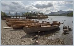 Derwent Boats (Darwinsgift) Tags: lake color water boats district derwent voigtlander cumbria boating 20mm skopar f35