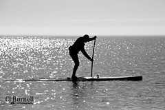 Determination (cjb_photography) Tags: lake toronto sports water specular lakeontario paddling paddleboard torontolife torontophoto torontoclicks
