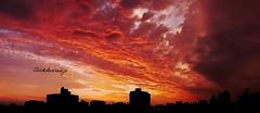 Final de tarde em Porto Alegre (Contato: clickdearaujo@gmail.com) Tags: sunset sol do vermelho por anoitecer