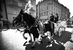 Tourist chariots (Bence Boros) Tags: none sony alpha a58 sigma 1020mm poland krakow main square trip journey travel chariot tourists horses people buildings architecture
