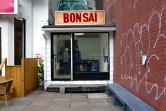bon sai (Ian Muttoo) Tags: toronto ontario canada gimp bonsai ufraw dsc58991edit