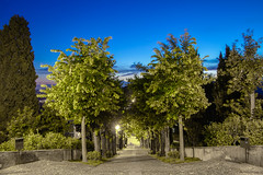 Scalinata di Montevecchia (Marta Panzeri) Tags: trees sunset church alberi tramonto hill collina santuario scalinata staicase montevecchia