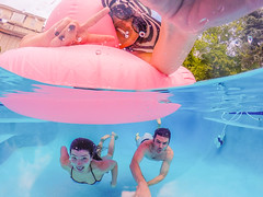 Happy Memorial Day! (AngelBeil) Tags: swimming underwater floating adventure poolside summerfun pinkflamingos gopro goprodome