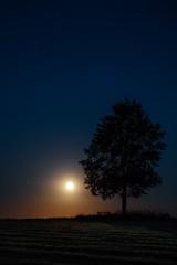 Moon rise (Martin Zurek) Tags: light orange moon tree nature beautiful night zeiss canon bench de landscape bayern deutschland full ze otus irsee 5ds otus1485 5dsr