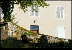 160611-8232-XM1.jpg (hopeless128) Tags: france eurotrip wall tree 2016 shutters nanteuilenvalle aquitainelimousinpoitoucharen aquitainelimousinpoitoucharentes fr