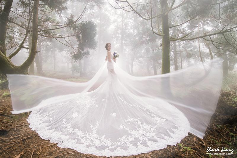 婚紗,拍婚紗,陽明山婚紗,自助婚紗,婚紗攝影