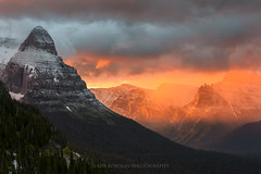 Collision of Color (Bob Bowman Photography) Tags: glaciernationalpark mountains sunrise light color trees gnp goingtothesunroad nationalparks montana glacier wilderness forest alpine clouds nikon