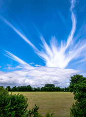 Un-Natural Sky (Ray Moloney Photography) Tags: ifttt 500px sky clouds blue green summer tree trees grass field light streaks trails contrails chemtrails weather modification
