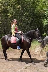 5D_IMG_6562 (Jeroen Kransen) Tags: bulgarije bulgaria    horse horseback equestrian horseriding paardrijden paardrit rodopen rhodopes