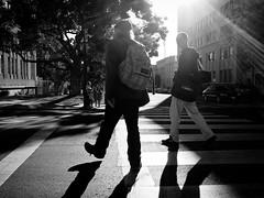 divergence (dr.milker) Tags: downtown berkeley california streetpeople bum bw blackandwhite urban crosswalk intersection          noiretblanc blancoynegro