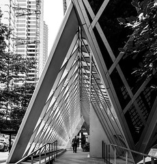 Seattle Central Library DSC04010-Edit (nianci pan) Tags: abstract seattle centrallibrary curve line pattern geometry geometric city cityscape landscape urban nianci pan sony sonyalpha dslr sonyphotographing architecture building reflection