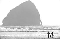 Oregon Coast (Sigma 150-600 Sport) (Patrick Santucci Photography) Tags: sigma sigmalenses sigmalens sigmaphoto sigmacameras sigmatelephoto sigma150600sport sigma150600 sigma150600s 150600mm sportslens telephoto familyphoto oregon oregoncoast blackandwhite monochrome bw pacificcityoregon dslrlens familyimage coastalimage pacificocean landscape landscapephotography landscapes blackandwhitelandscapes santucci