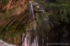 """Lower Emerald Pool • <a style=""""font-size:0.8em;"""" href=""""http://www.flickr.com/photos/63501323@N07/16136278934/"""" target=""""_blank"""">View on Flickr</a>"""