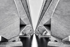 DELINEATION (ChieFer Teodoro) Tags: bridge bw white black water canon landscape singapore long exposure cityscape esplanade manfrotto 6d 1635 1635mm delineation nd110 aputure mt190xpro4