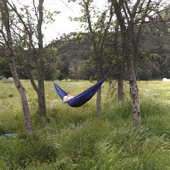 Sitting Pretty (SilasOfTheLambs) Tags: park camping trees grass canon relaxing malibu hammock relaxation campground 40d