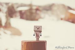 "Snowman Danboard (darktiger) Tags: snow cold japanese robot cool interesting funny manga suit cardboard figure yotsuba danbo revoltech danboard cardbo ""actionfigure"" ""stanfordmoore"""