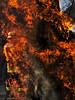 bomberos (jlborelli) Tags: fire flame fuego feuer flamme feuerwehr incendio bomberos firefighters llamas brigade burningdown feuerbrand flamas