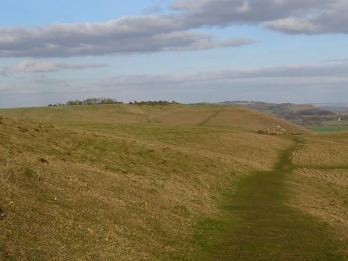 Alton Barnes White Horse (Wiltshire)