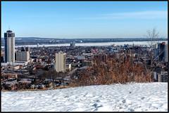 Hamilton, Ontario (cooxon) Tags: city winter urban lakeontario winterlandscape hamiltonontario karencooksonphotography lumixfz200