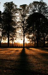 Aur y bore (Rhisiart Hincks) Tags: trees silhouette sunrise dawn cardiff amanecer arbres aurora caerdydd coed sonnenaufgang zonsopgang pontcanna silhueta zuhaitzak 日出 夜明け aušra gwawr kerdiz codiadyrhaul koil silueto cysgodlun egunsenti świt sziluett zilueta craobhan èirighnagrèine gwez aamunkoitto siluetă savheol silwét beulanlatha irreenygreiney breacadhanlae ledskeud