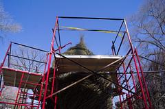 Turret (MadKnits) Tags: sculpture tower philadelphia sticks construction towers scaffold sculpturegarden morrisarboretum patrickdougherty sticksculpture